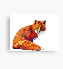 Sly guy.  Canvas Print