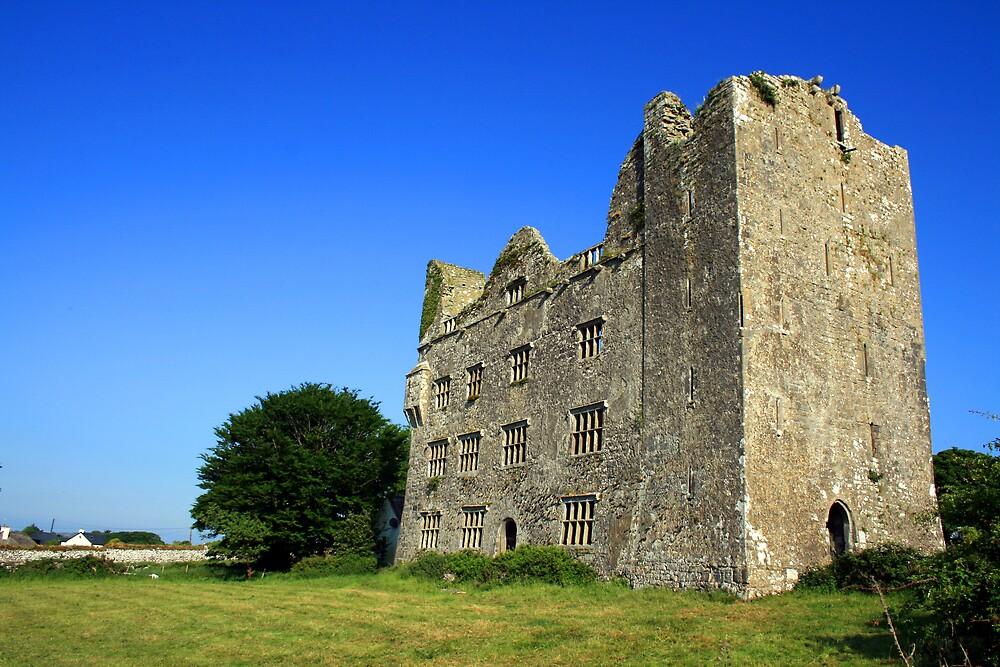 Lemenagh Castle by John Quinn