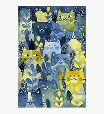 kitty forest Photographic Print