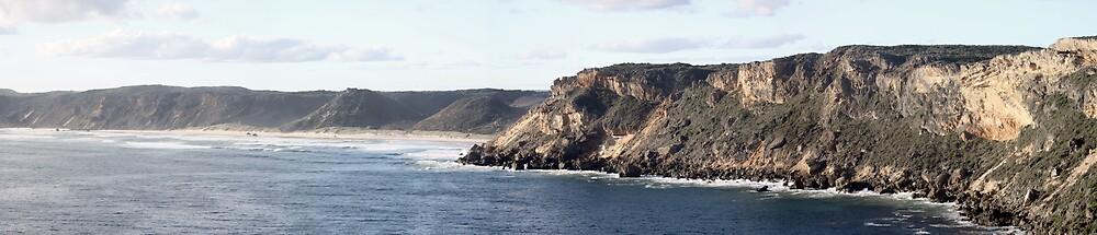 Cliffs Windy Harbour by Peter Simpson