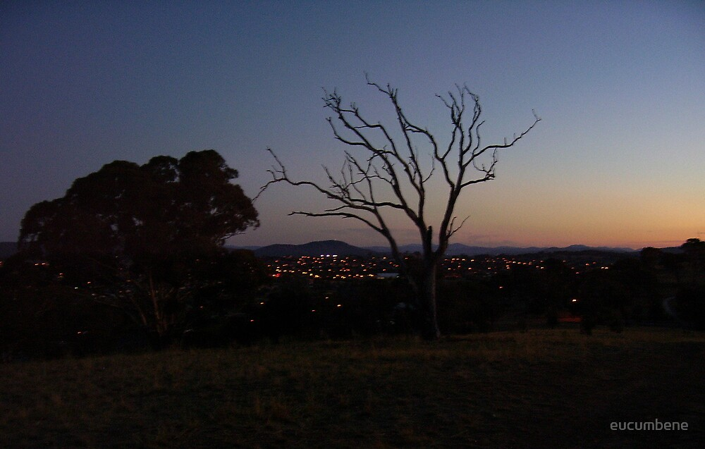 """""""The end of the day"""" at Gungahlin (Australian Capital Territory) by eucumbene"""