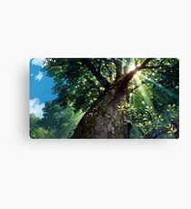 Miyazaki's Forest Canvas Print
