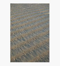 Beach Ridges Photographic Print