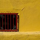 Wall, Tucson by fauselr