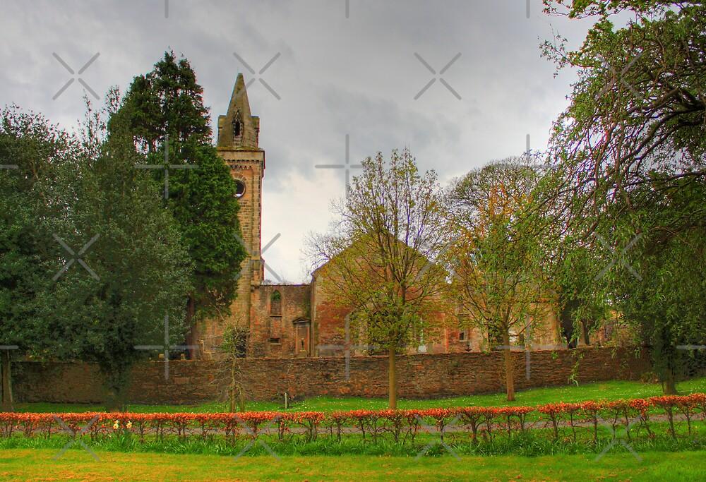 Carriden Old Church II by Tom Gomez