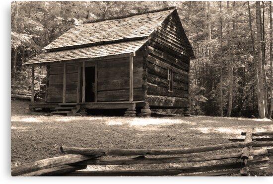 John Ownby's Cabin by Gary L   Suddath