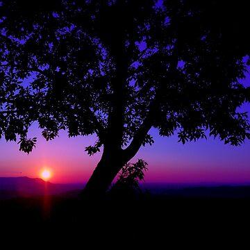Tennessee Mountain Sunset by TangerineKiki