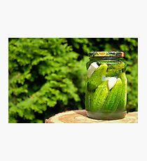 Homemade pickled cucumber Photographic Print