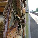 le chemin de fer by armadillozenith
