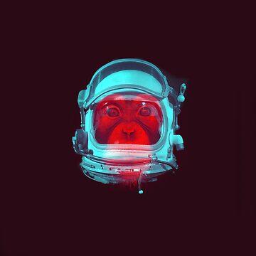 Space Monkey by Little-Rabbit
