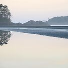Chesterman Beach Morning by Mikeinbc1