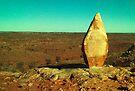 desert sculpture ....one by Juilee  Pryor