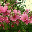 Bright Floral Splash by GImages