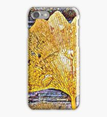 Dewy Ginkgo iPhone Case/Skin