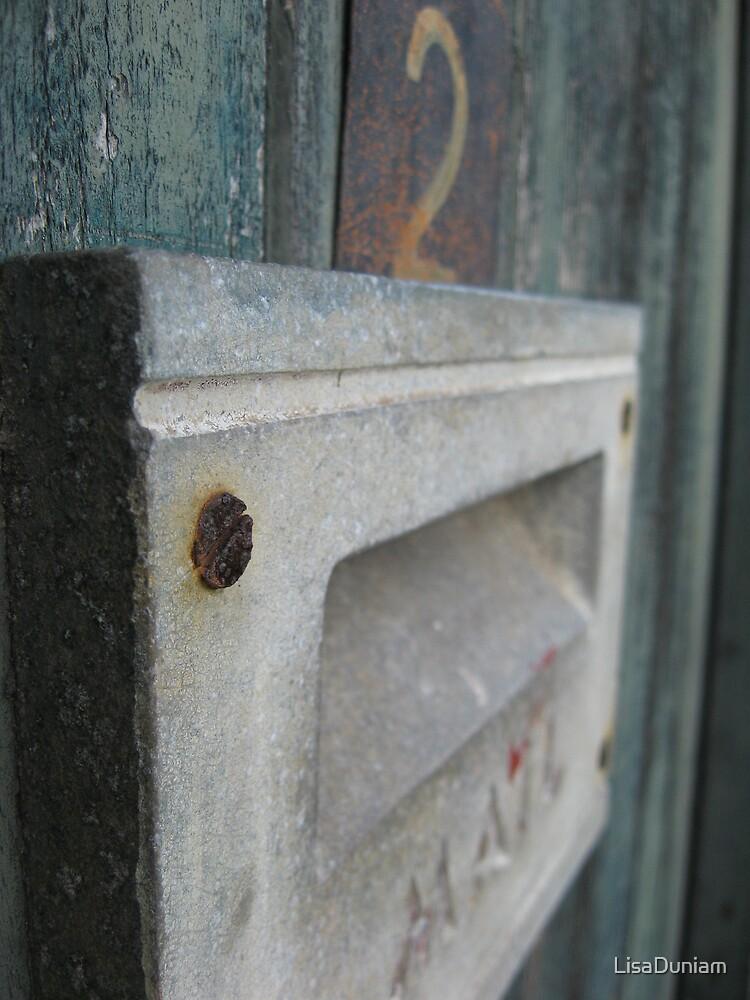 Anyone home? by LisaDuniam