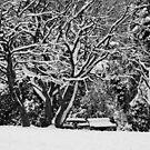 Blackheath Snow 3 by Geoff Smith