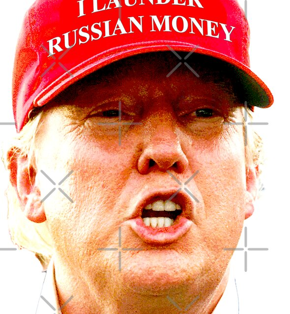 I Launder Russian Money by Thelittlelord
