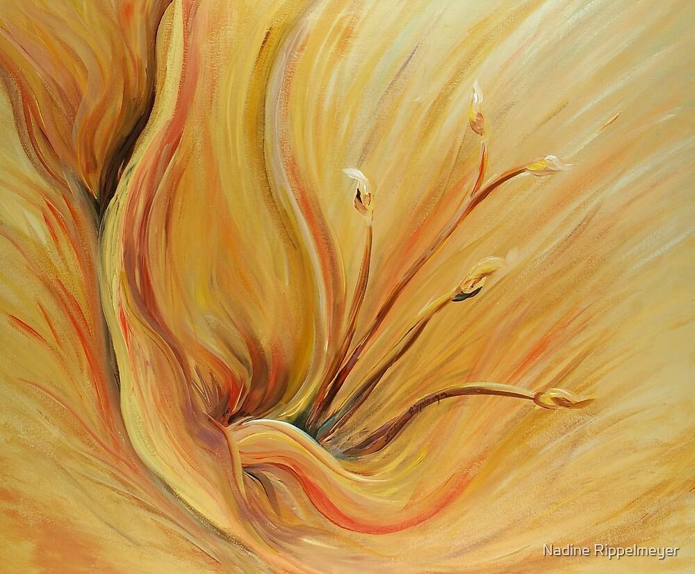 Golden Glow by Nadine Rippelmeyer