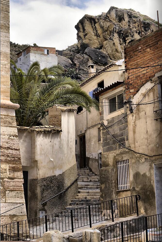 Medieval Mula by PhotoMula