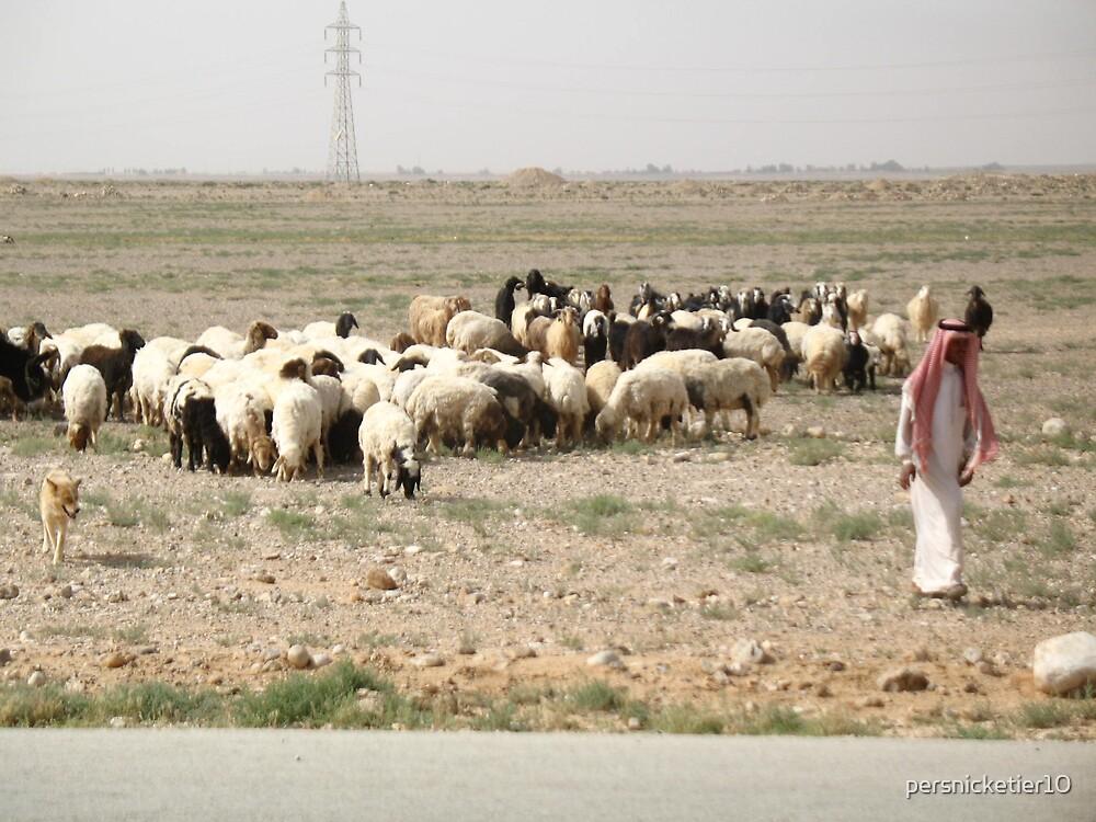 Modern Day Shepherd by persnicketier10