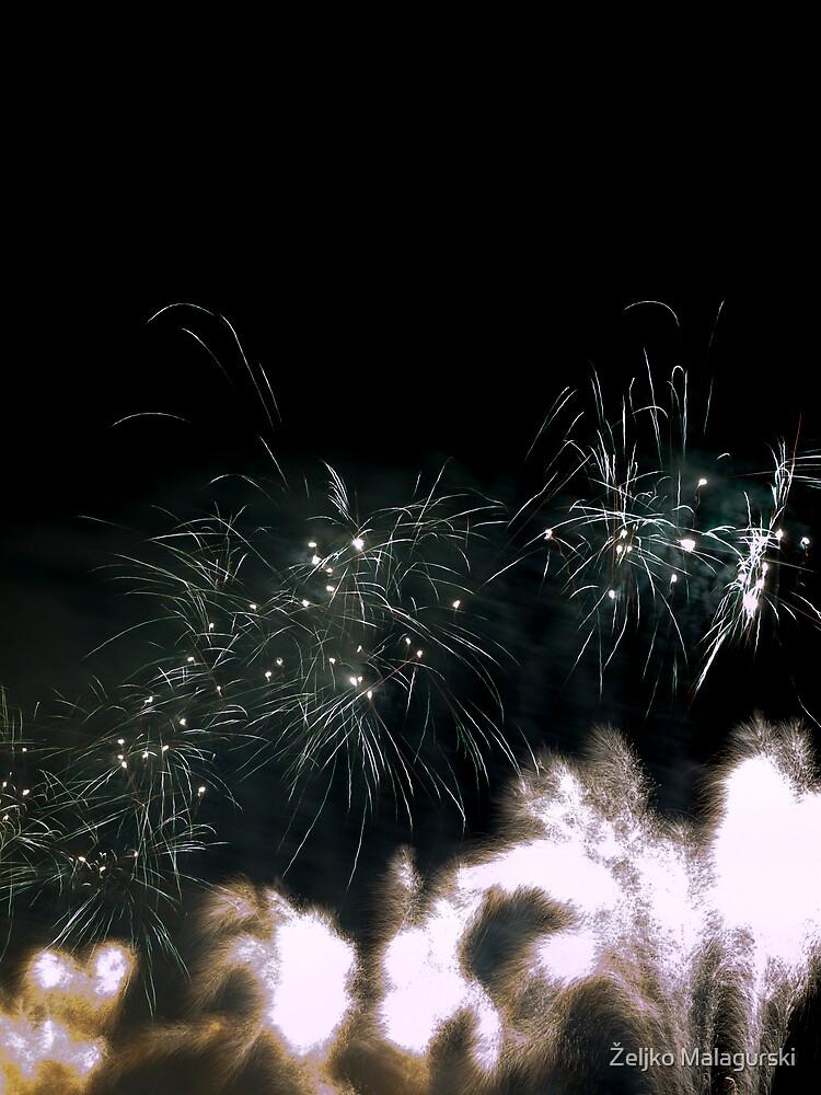 Firework 19 by Željko Malagurski