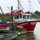 Crofter SH304, Southwold Harbour by wiggyofipswich