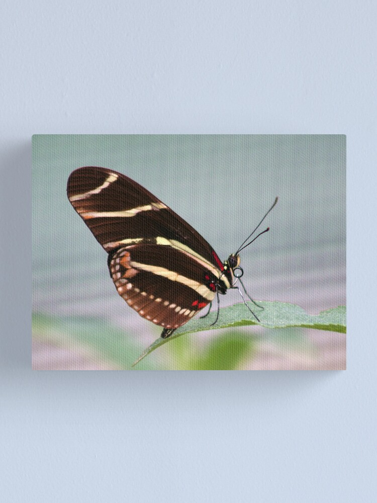 Alternate view of The other side  Canvas Print