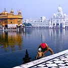 POOL OF NECTAR - INDIA by Michael Sheridan