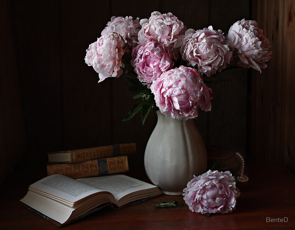 Peonies by BenteD