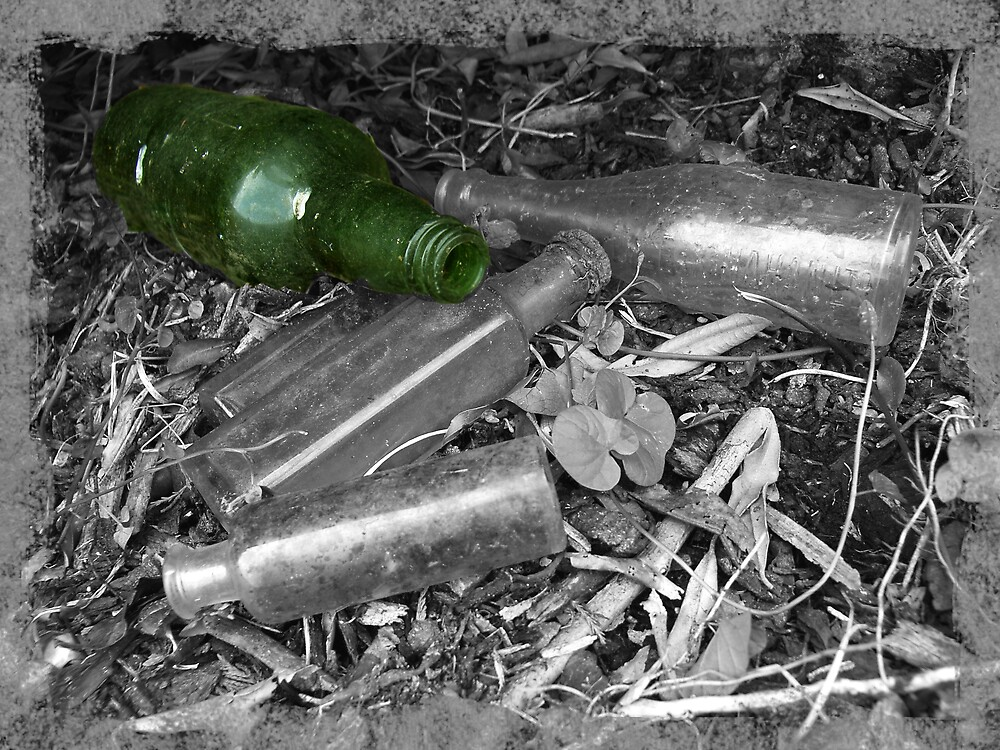 one green bottle ... by SNAPPYDAVE