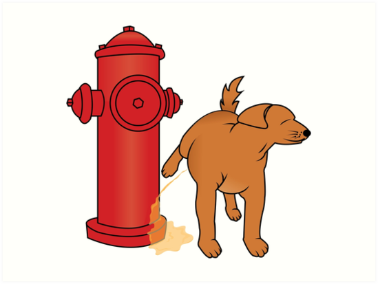 Image result for dog peeing hydrant