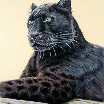 Black Panther - Jaguar by ArtsandDogs