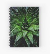 Succulent. Haworthia fasciata Spiral Notebook