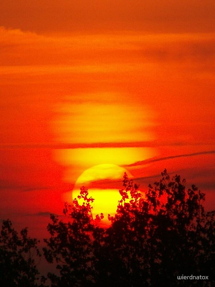 Orange Sunset by wierdnatox