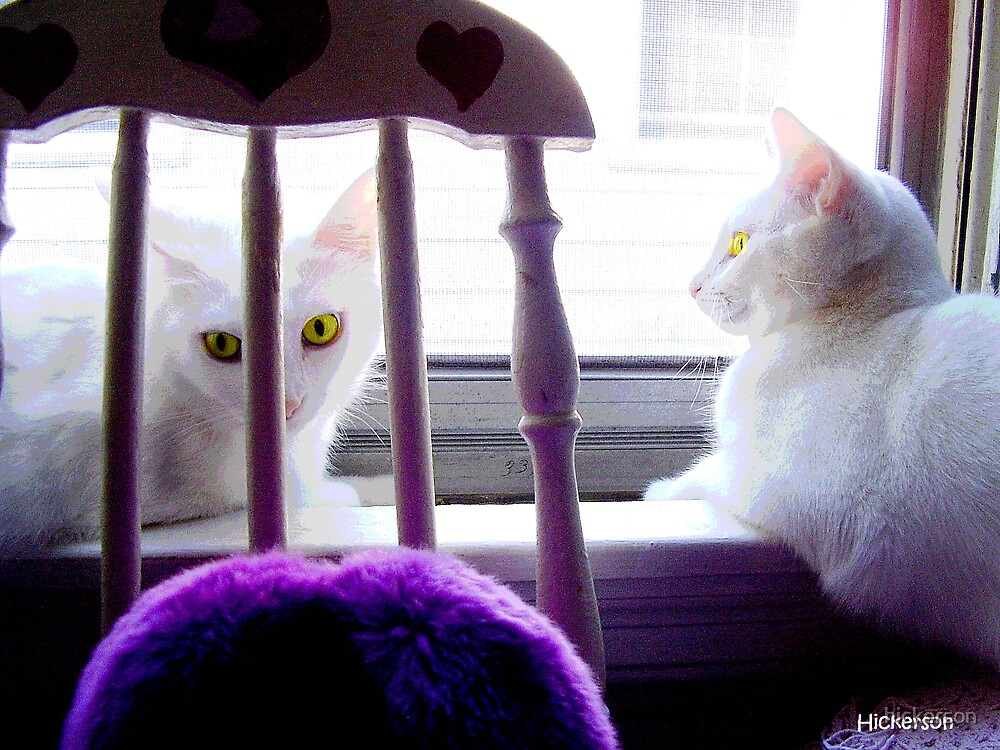 Drama on the Sill by hickerson
