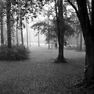 Rainy Sunday II by Jessie Harris