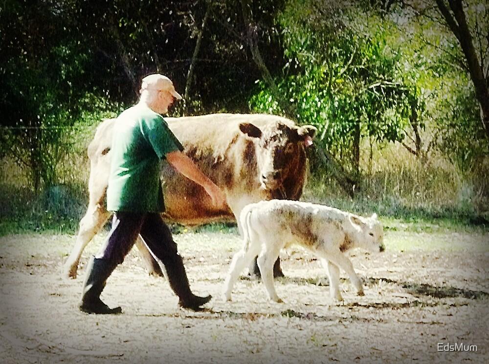 Farmer Ken at work on the Farm 2013 by EdsMum