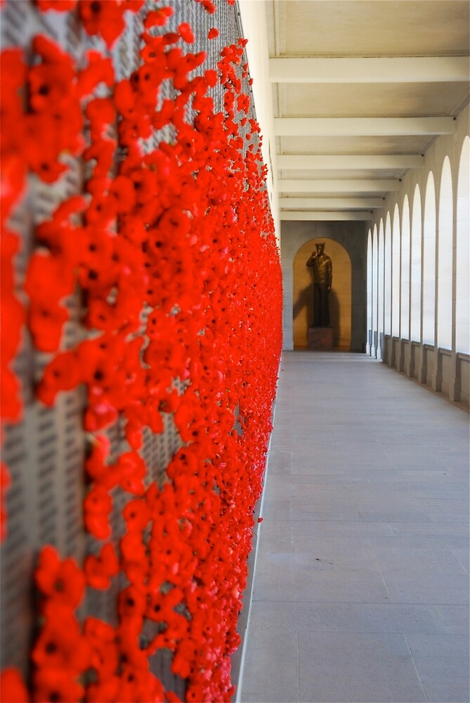 Poppy Memorial by Penny Smith