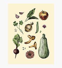 Beautiful food Photographic Print