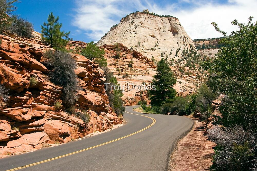Road Thru Zion by Troy Dodds