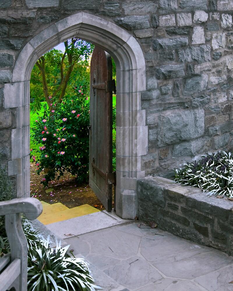 The Door into Summer by Francesa
