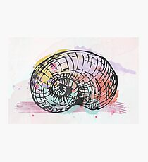 Watercolor snail AP098 Photographic Print