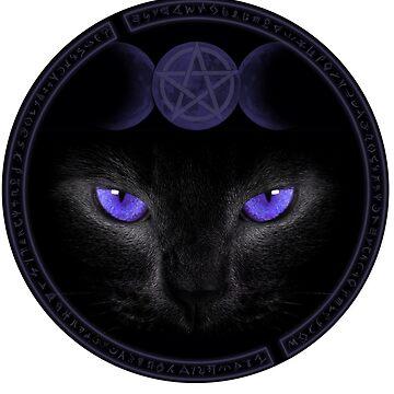 Magic Cat by mysticline