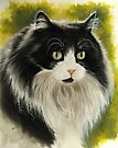 Maine Coon by BarbBarcikKeith
