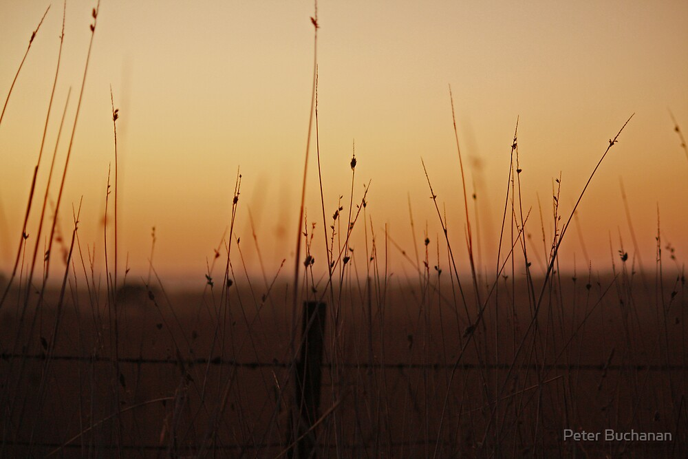 Outback Sunrise by Peter Buchanan