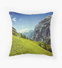Lauterbrunnen Valley in Bloom Throw Pillow