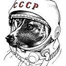 «Laika, space traveler» de Celeste Ciafarone