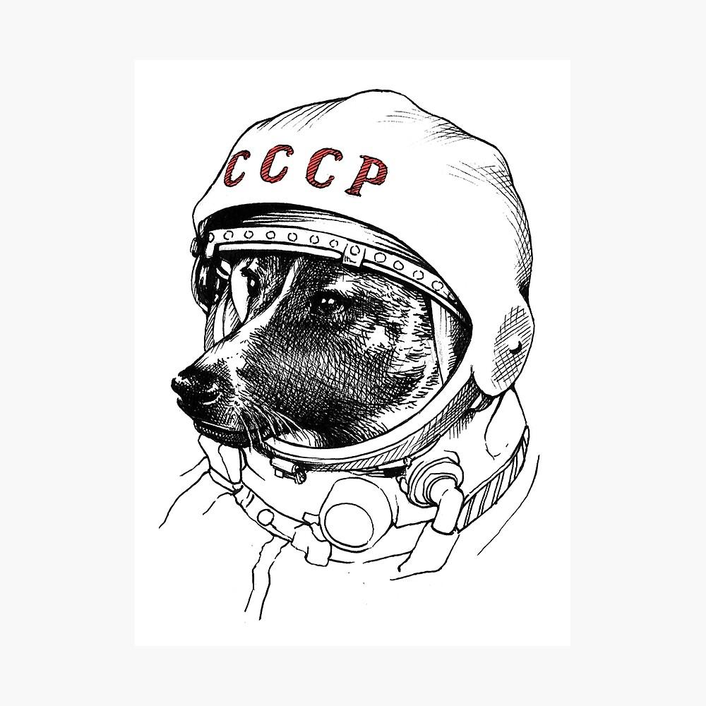 Laika, space traveler Photographic Print