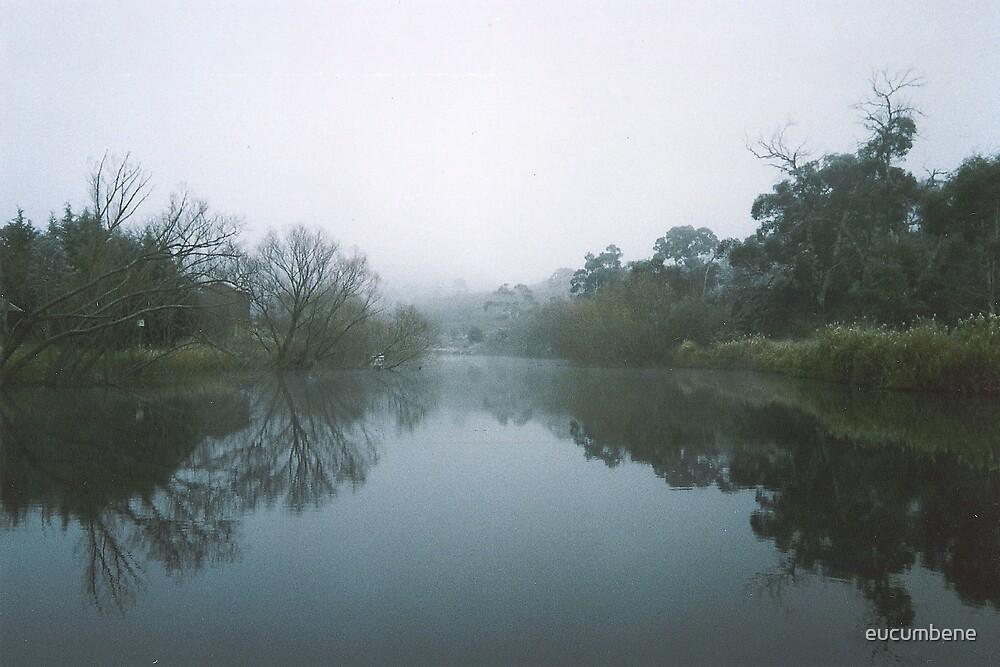"""Reflections"" - Murrumbidgee River (Cooma) by eucumbene"