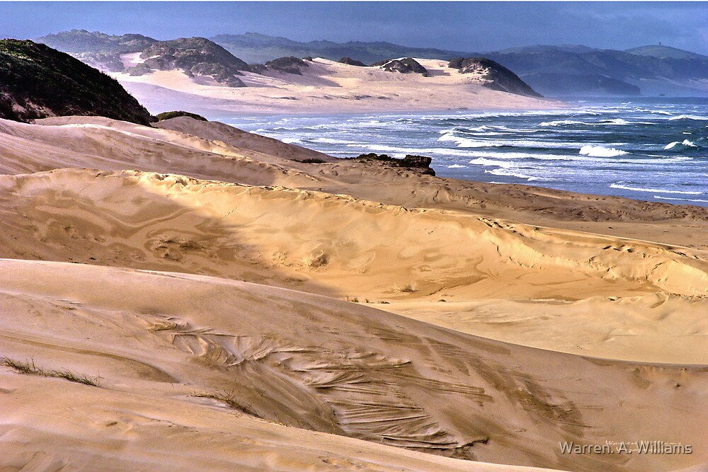 The Dunes by Warren. A. Williams